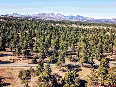 Durango Residential Lots & Land NEW: 385 Blue Ridge