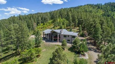 Pagosa Springs Single Family Home For Sale: 2223 Loma Linda Drive