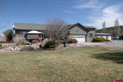 Durango CO Single Family Home NEW: $585,000
