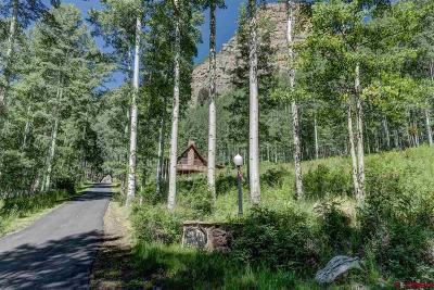 Durango Single Family Home For Sale: 684 Hermosa Cliffs Road