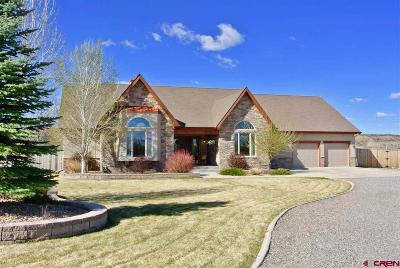 Montrose Single Family Home For Sale: 67841 Tumbleweed Road