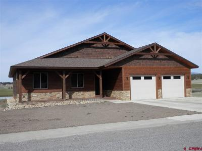 Pagosa Springs Single Family Home For Sale: 333 Blue Heron Circle