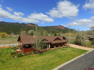 Durango Single Family Home UC/Contingent/Call LB: 1199 N Dalton Ranch Road