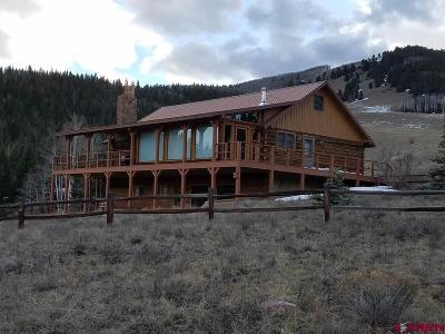 Creede Single Family Home For Sale: 597 Aqwisic Drive