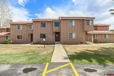 Pagosa Springs Condo/Townhouse UC/Contingent/Call LB: 145 Davis Cup Drive #4035