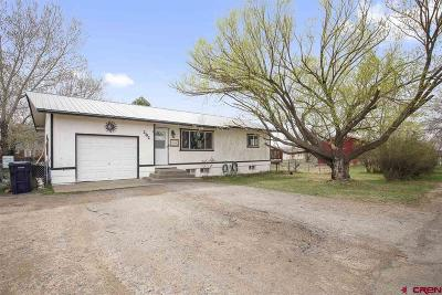 Bayfield Single Family Home For Sale: 282 S Mesa Ave