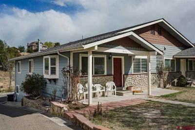 Durango CO Condo/Townhouse NEW: $394,000