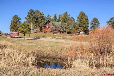 Pagosa Springs Single Family Home For Sale: 78 Creekside