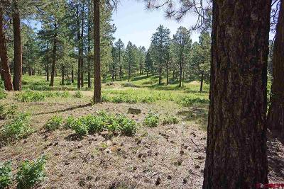 Mancos Residential Lots & Land For Sale: Cr 36.5