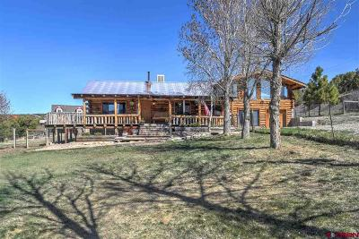 Mancos Single Family Home For Sale: 41458 Hwy 184