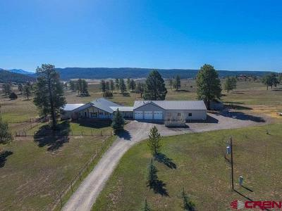Pagosa Springs Single Family Home For Sale: 251 County Rd 359