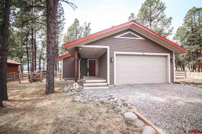 Pagosa Springs Single Family Home For Sale: 90 Inspiration