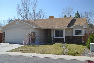 Delta County, Montrose County Single Family Home NEW: 1332 Diamond Hill Street