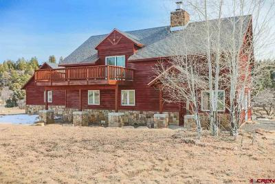Pagosa Springs Single Family Home For Sale: 832 Scenic Avenue