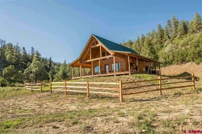 Pagosa Springs Single Family Home For Sale: 5458 State Hwy 151
