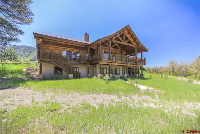 Pagosa Springs Single Family Home For Sale: 1329 Spring Valley Ranch