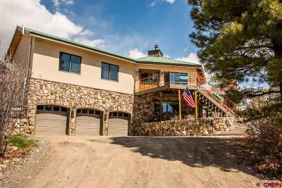 Pagosa Springs Single Family Home For Sale: 56 Chestnut Court