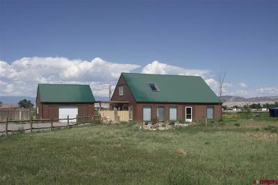 Delta County, Montrose County Single Family Home Back on Market: 7389 6025 Road