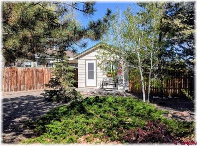 Montrose Single Family Home NEW: 925 S 1st Street