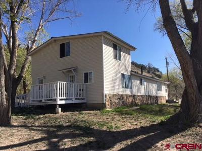 Delta County, Montrose County Single Family Home NEW: 38361 133 Highway