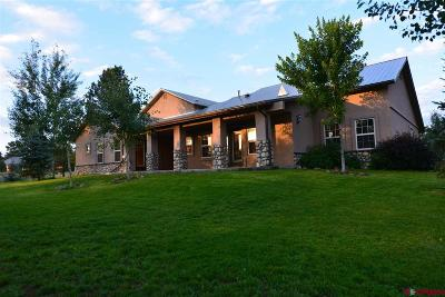 Pagosa Springs Single Family Home For Sale: 24 Hartwell