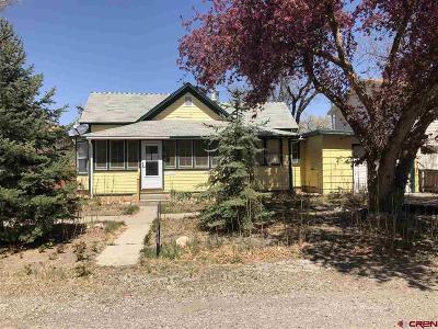 Olathe Single Family Home For Sale: 439 S 6th Street