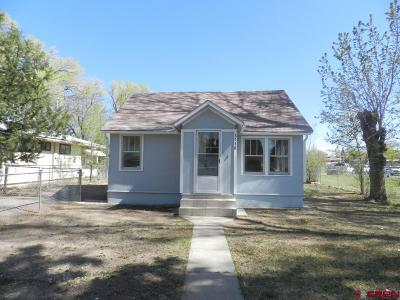 Montrose Single Family Home UC/Contingent/Call LB: 1138 S 5th Street