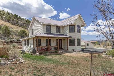 Durango Single Family Home For Sale: 96 Walker Lane