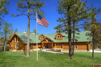Pagosa Springs Single Family Home For Sale: 473 N Black Bear Place