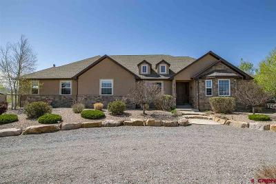 Montrose Single Family Home For Sale: 67630 U67 Trail