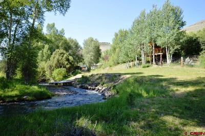 Gunnison Single Family Home For Sale: 993 County Road 20a