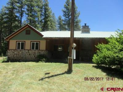 Pagosa Springs Single Family Home For Sale: 91 Elk