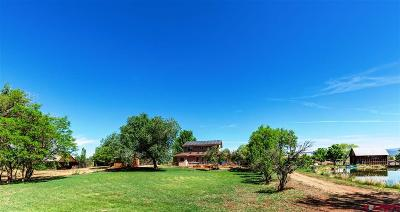 Durango Single Family Home For Sale: 324 Rogers Lane