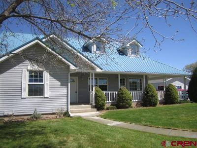 Montrose Single Family Home For Sale: 62845 Ohlm Road