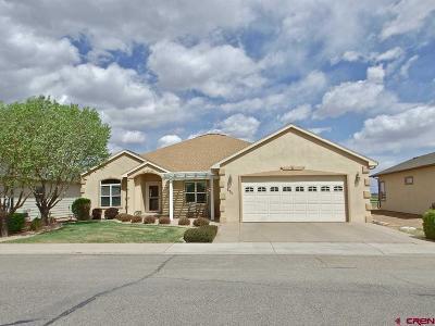 Montrose Single Family Home For Sale: 593 Cobble Drive