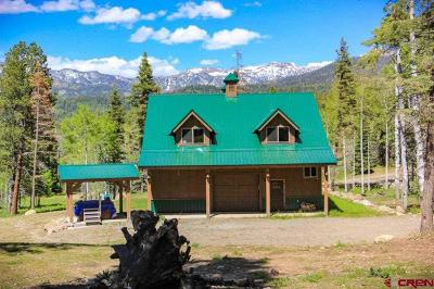 Pagosa Springs Single Family Home For Sale: 3561 Needles View Place