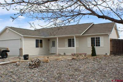 Montrose Single Family Home For Sale: 1732 Drafthorse Road