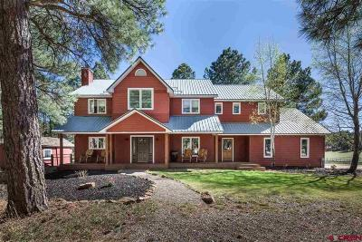 Bayfield Single Family Home For Sale: 735 Cr 505