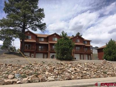 Pagosa Springs Condo/Townhouse For Sale: 176 N 14th St. #Unit #4