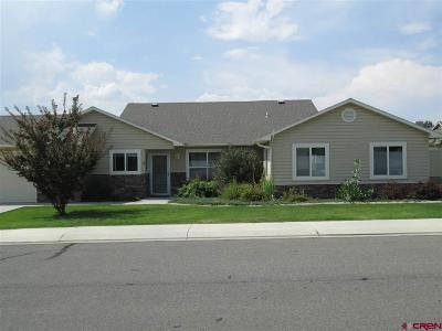 Montrose Condo/Townhouse UC/Contingent/Call LB: 1119 Dry Creek Avenue