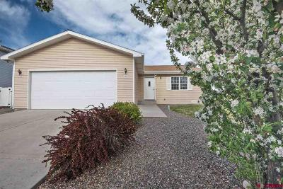 Montrose Single Family Home UC/Contingent/Call LB: 261 Ranch Court