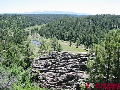 Mancos Residential Lots & Land For Sale: 16800 Cr 36.5