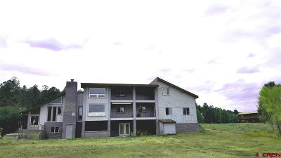 South Fork Single Family Home For Sale: 558 Conifer Drive