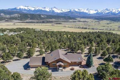 Ridgway Single Family Home For Sale: 228 Pleasant Valley Court