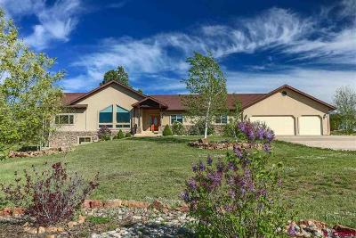 Pagosa Springs Single Family Home For Sale: 1325 Lakeside Drive