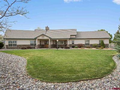 Montrose Single Family Home For Sale: 2300 Stone Bridge Drive