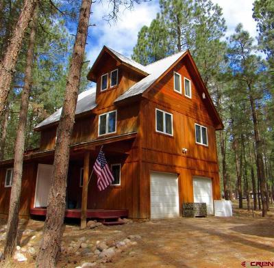 Durango Single Family Home For Sale: 12102 Cr 250