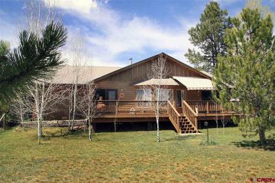 Pagosa Springs Single Family Home UC/Contingent/Call LB: 129 Periwinkle Drive
