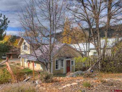 Durango Single Family Home For Sale: 3021 E 5th Avenue
