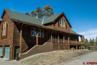 Pagosa Springs Single Family Home For Sale: 66 Evans Court